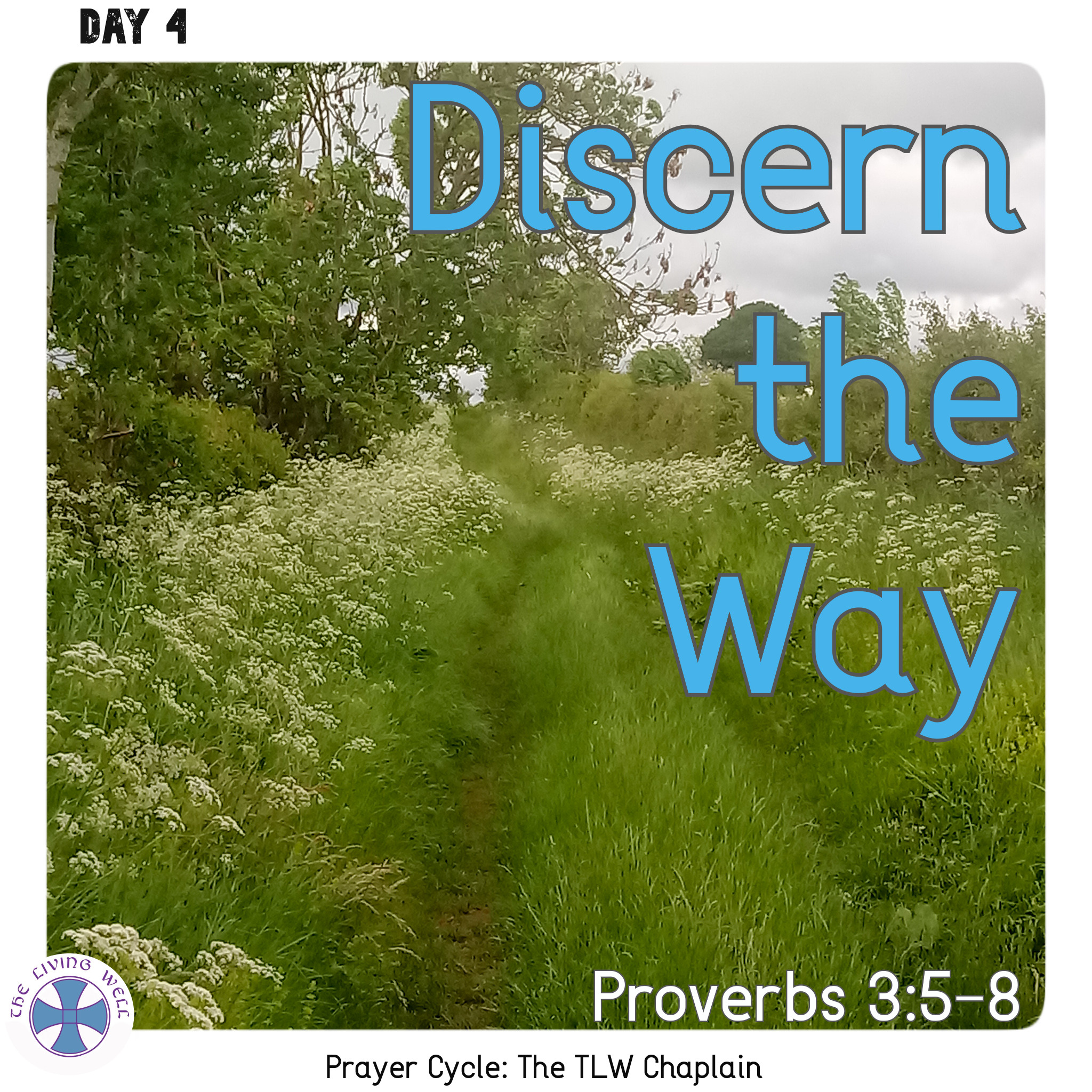Discern the Way
